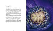Inlaga Fyra arstider_245x290_anemon_26-27-full